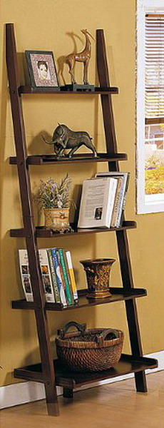 Image of: The House Face for Unique Rack Ideas from Wooden Ladders book