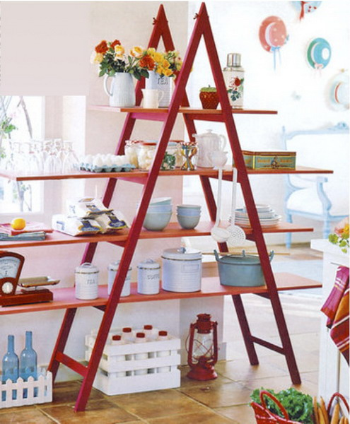 Image of: The House Face for Unique Rack Ideas from Wooden Ladders furniture