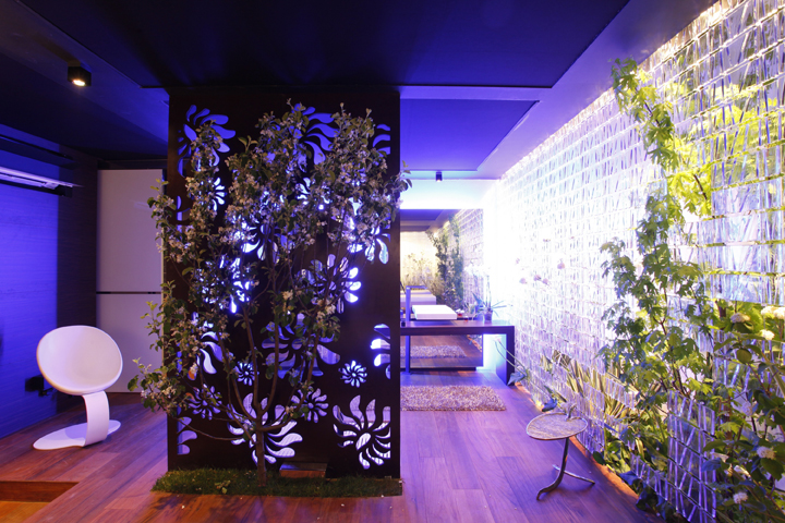 Image of: Interior Spa Design with Colourfull Theme and plant