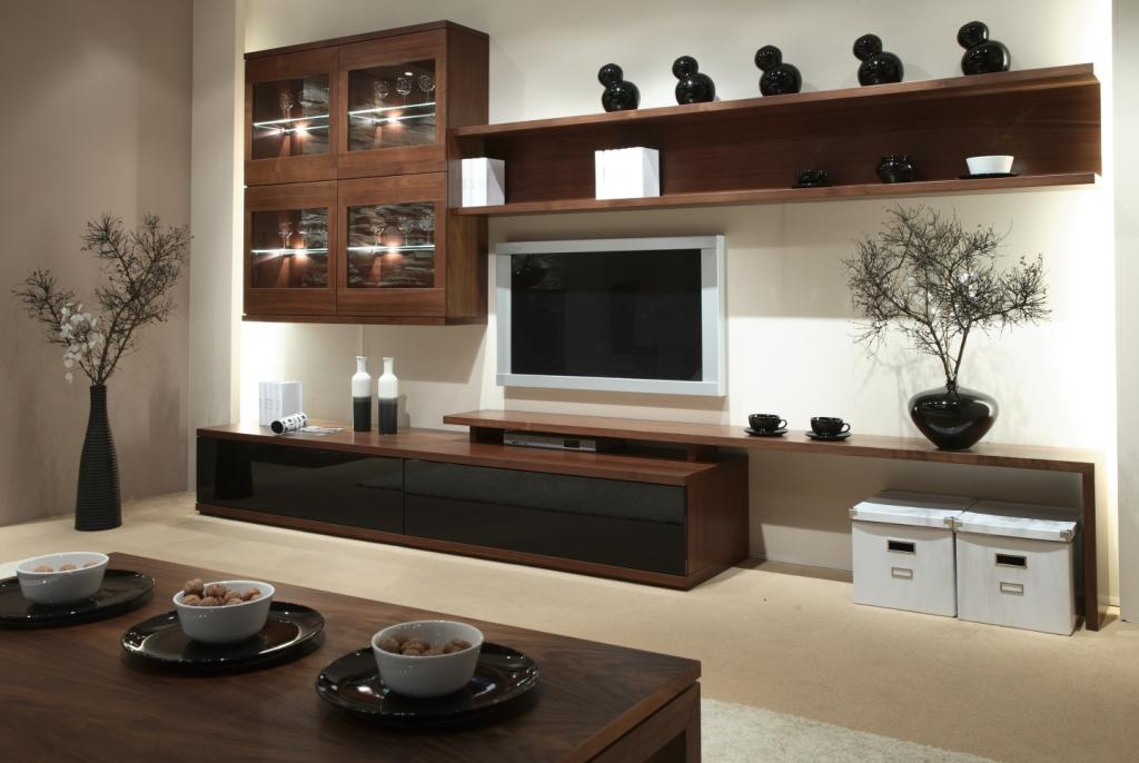 Image of: Modern Living Rooms Idea with 5 Soft Brown Theme multiform salon