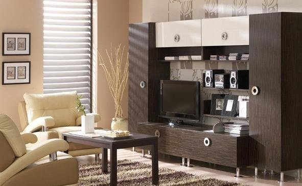 Image of: Modern Living Rooms Idea with 5 Soft Brown Theme ringo