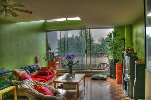 Image of: Room Interior Design with The Plant Into a Room view living area