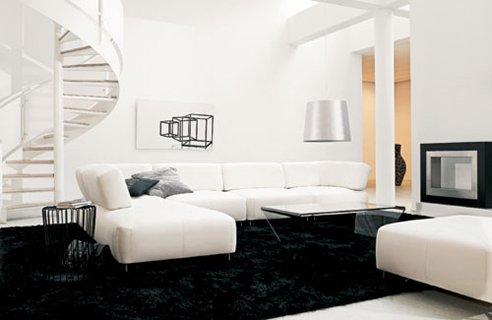 Image of: Black and White Living Room Decor Inspiration