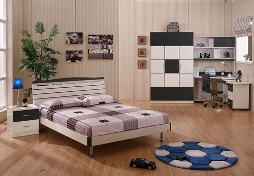 Image of: Furniture for Young Room