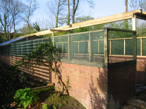 Image of: Greenhouse Build Walls