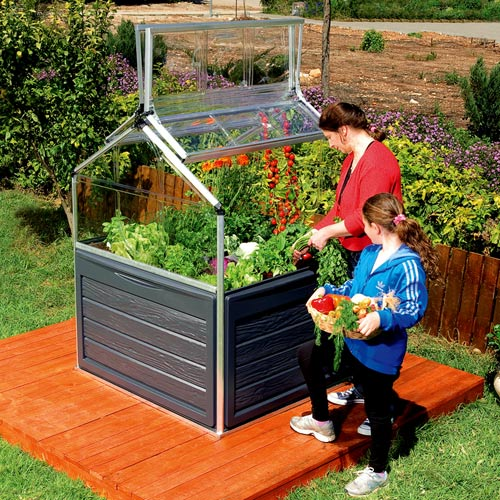 Image of: Mini Greenhouse for Kids