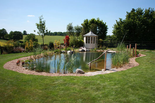 Image of: Natural Swimming Pool in the Middle of a Garden