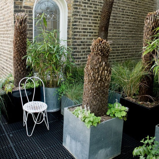 Image of: Roof Terrace Garden