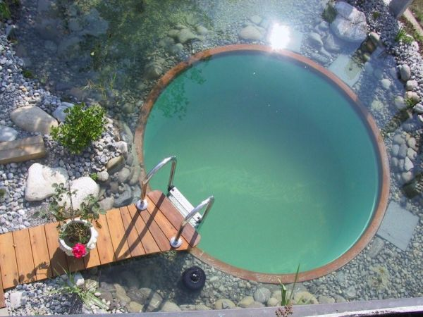 Small Natural Swimming Pool