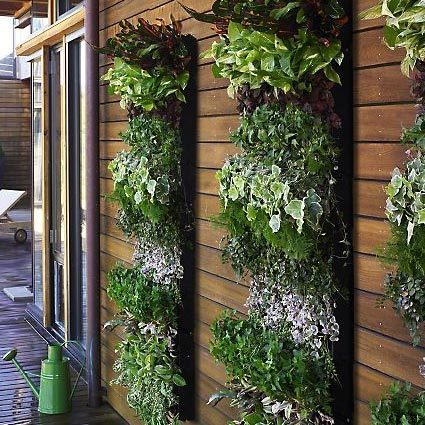 Image of: Vertical Small Space Garden