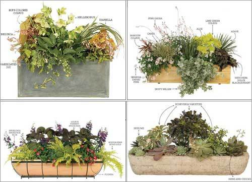Image of: Window Box Design Ideas