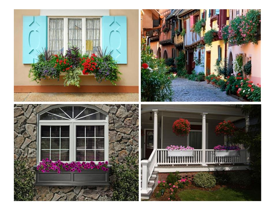 Image of: Window Flower Boxes Collection