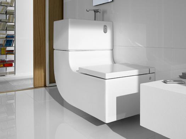 Toilet and Sink W+W