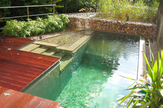 Image of: Clear Water Natural Swimming Pool