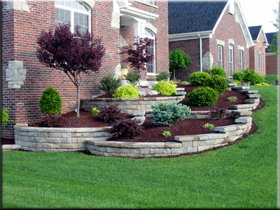 Image of: House Landscape Design