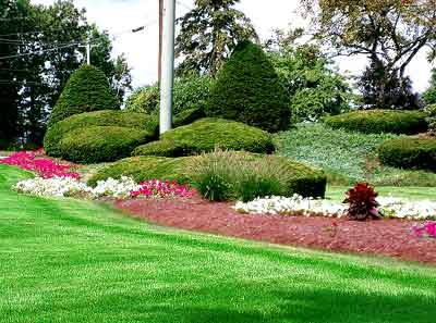 Image of: Landscaping Ideas for Your House