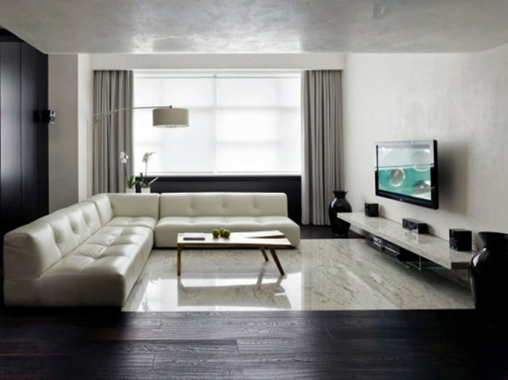 Image of: Minimalist Living Rooms