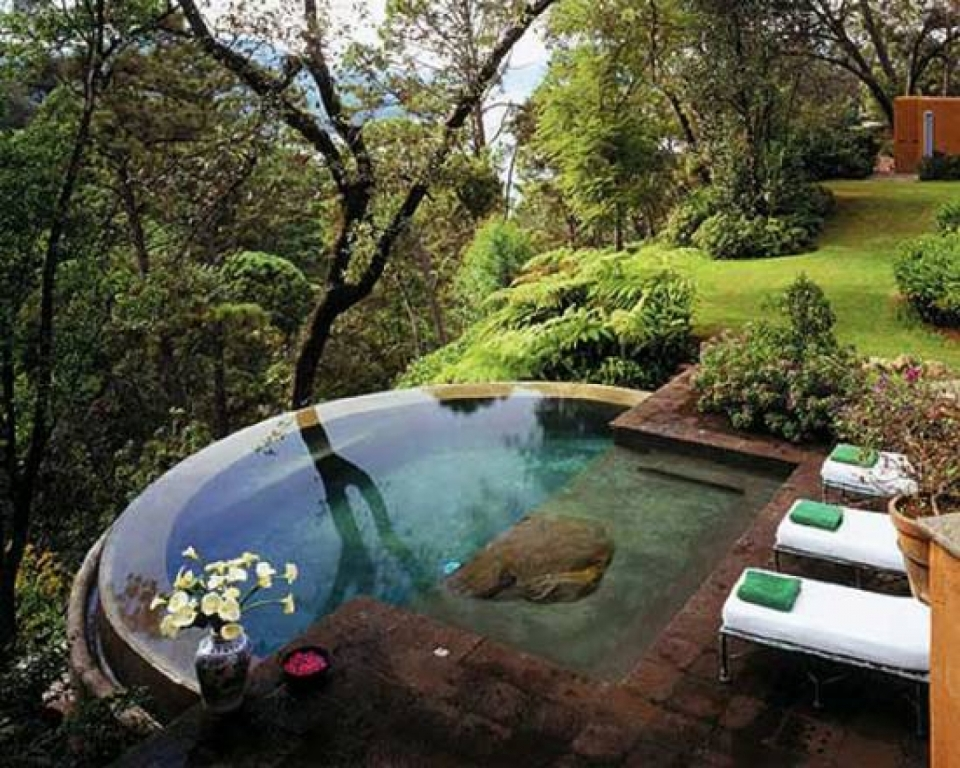 Image of: Small Backyard Ideas With Pool