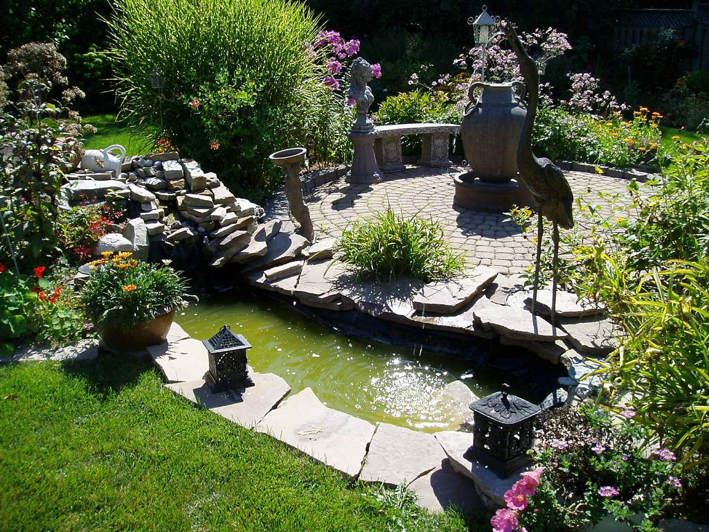 Image of: Small Backyard Ideas
