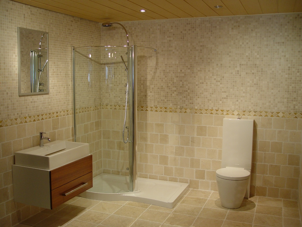 Image of: Small Bathroom Designs With Shower Only