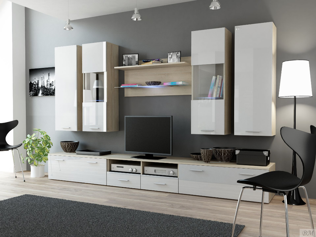 Image of: Wall Units Modern Styles