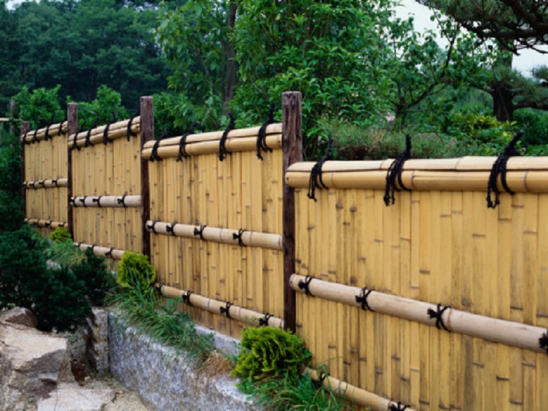 Image of: Bamboo Cheap Fence Ideas