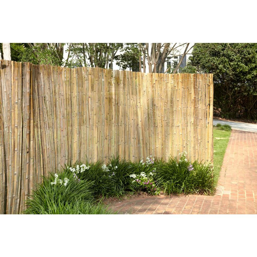 Image of: Bamboo Cheap Privacy Fence