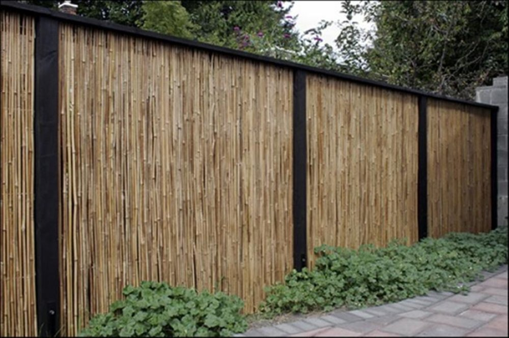 Image of: Bamboo Fence Diy
