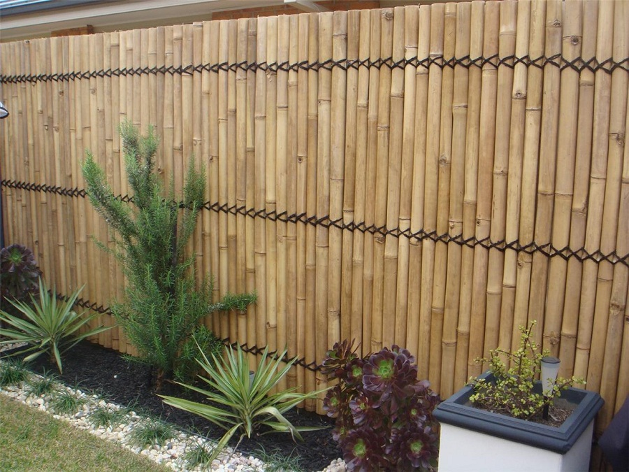 Image of: Bamboo Fence High