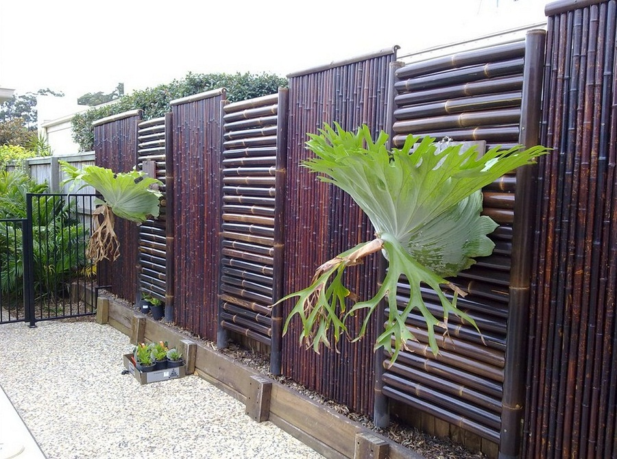 Image of: Bamboo Fence Paint