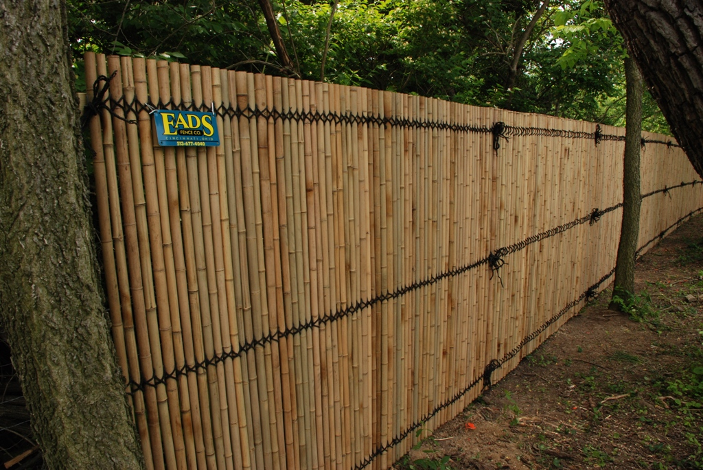 Image of: Bamboo Fencing Rolls Ideas