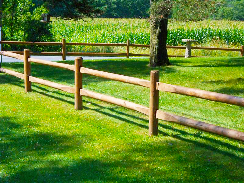 Beautiful Cedar Fence Posts