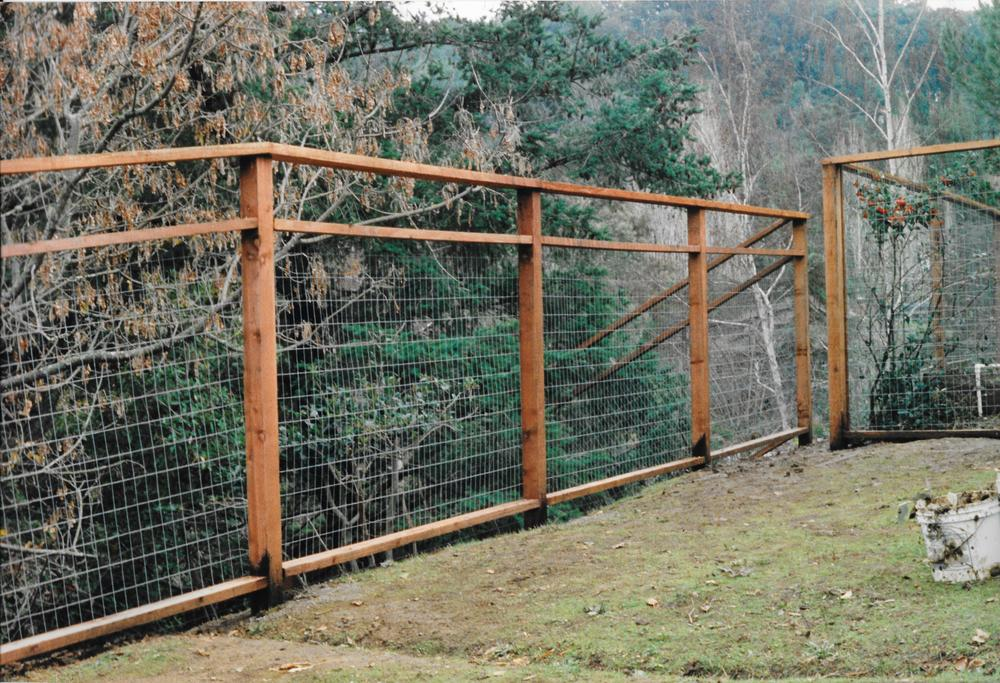 Beautiful Deer Fences