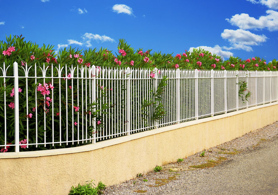 Image of: Beautiful Metal Fences