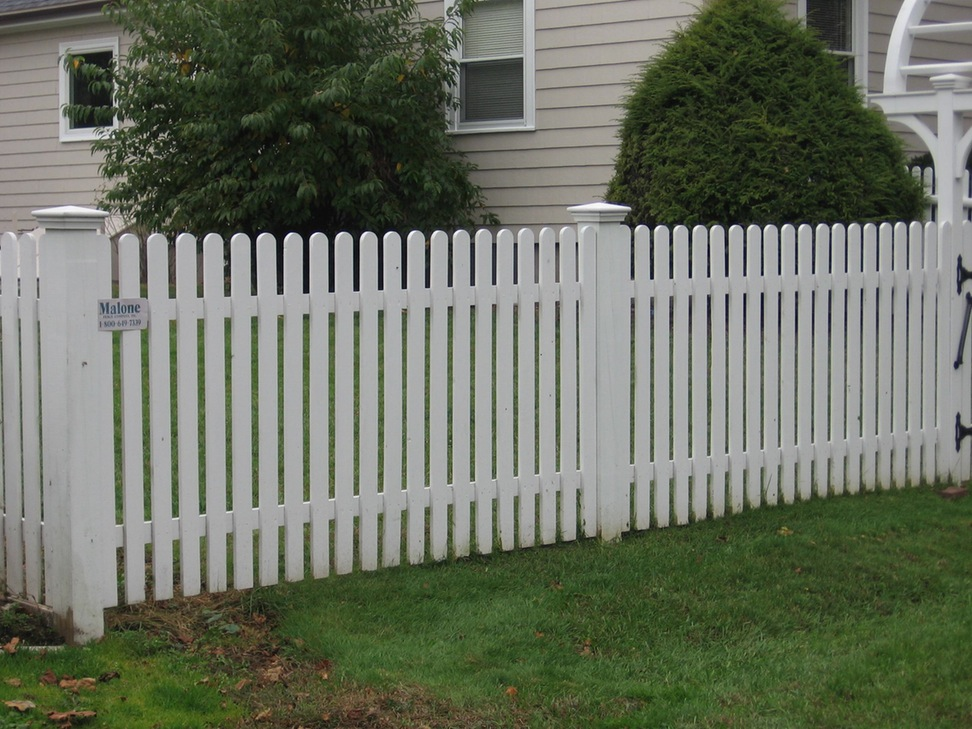 Image of: Best Cheap Fence Ideas