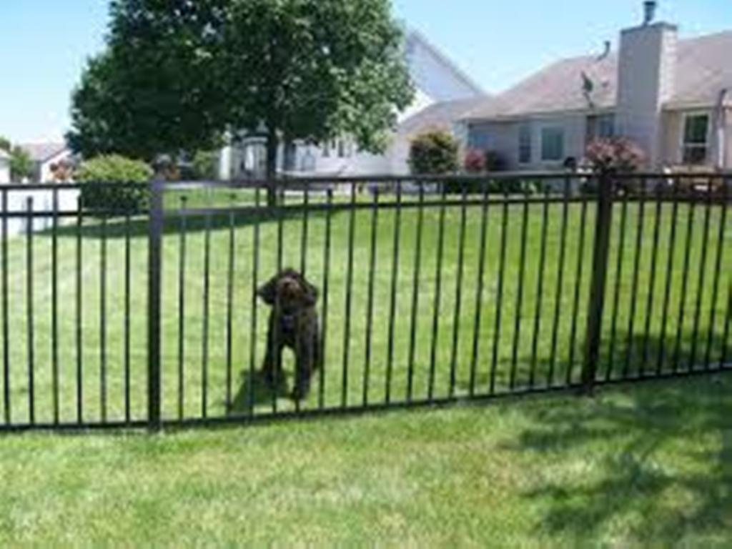 Image of: Black Aluminum Fence Cost