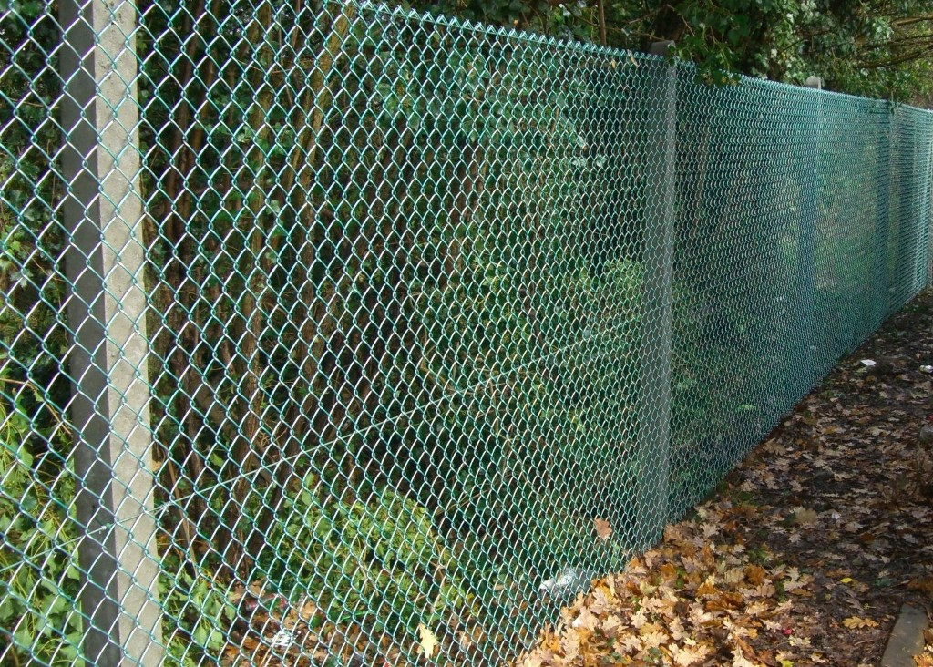Image of: Blue Mesh Fencing