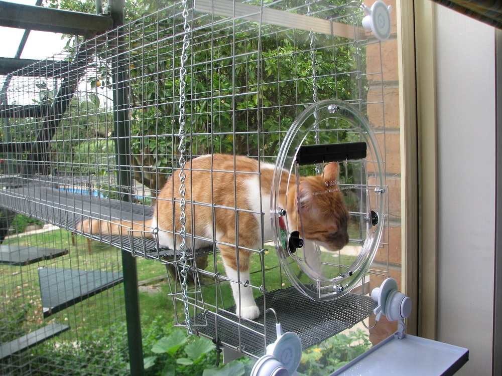 Image of: Concept Cat Fence