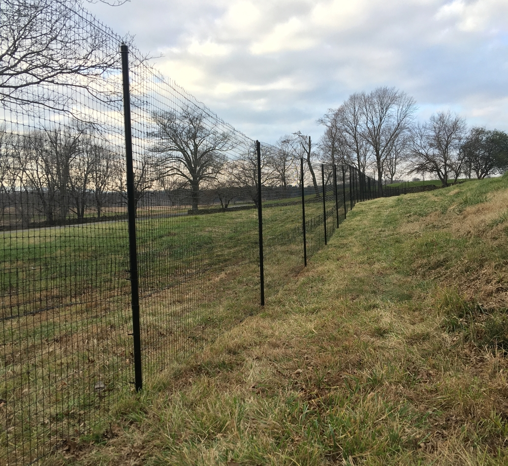 Deer Fencing Installed