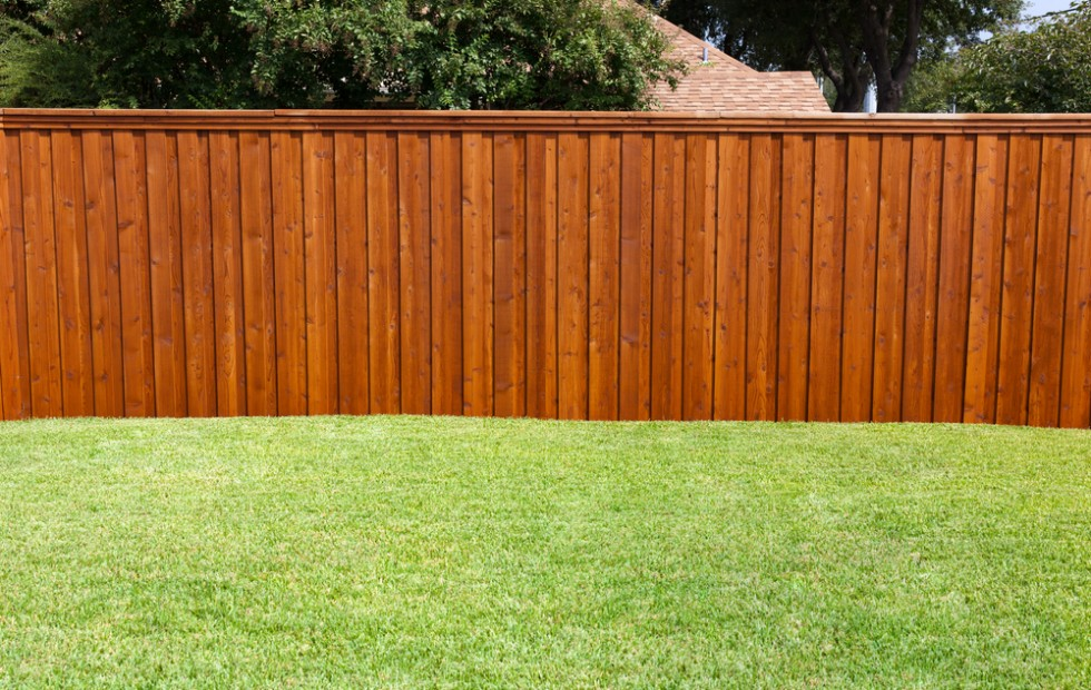 Design of Fence Stain