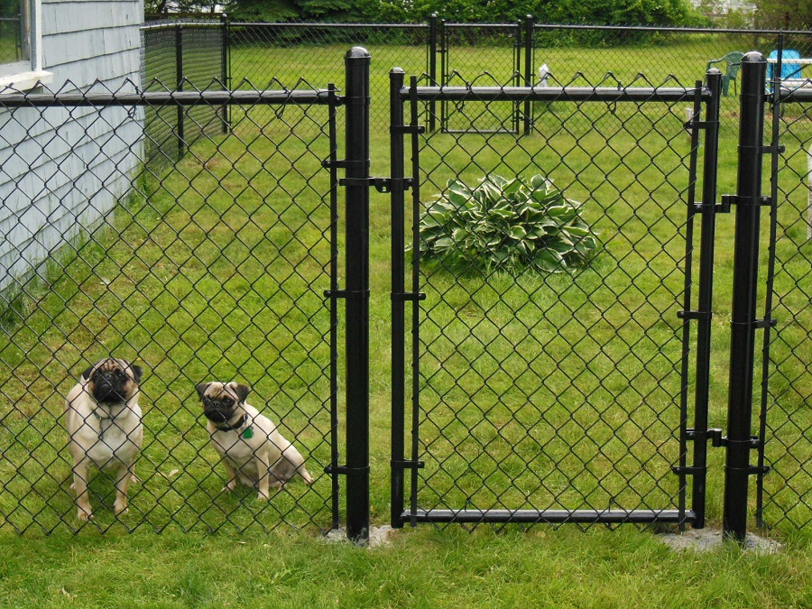 Dog Fence Wire Black