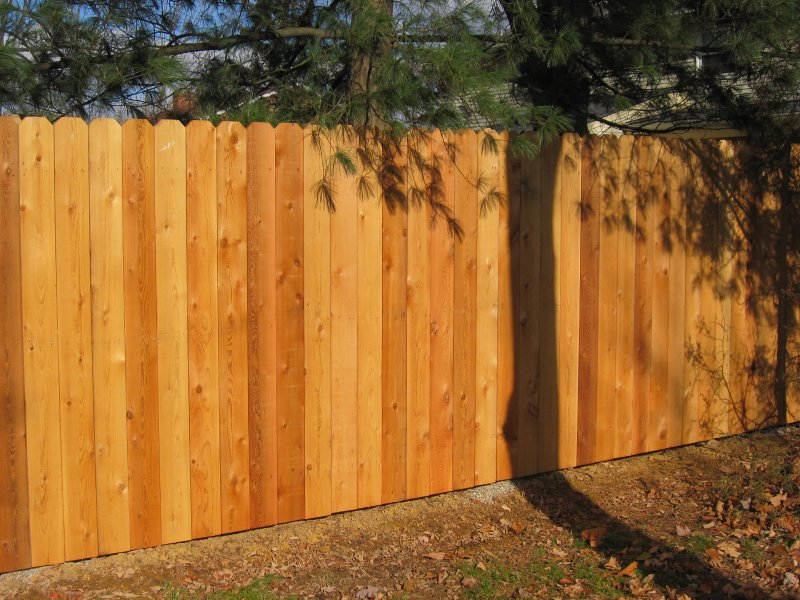 Image of: Dog Fences Wood