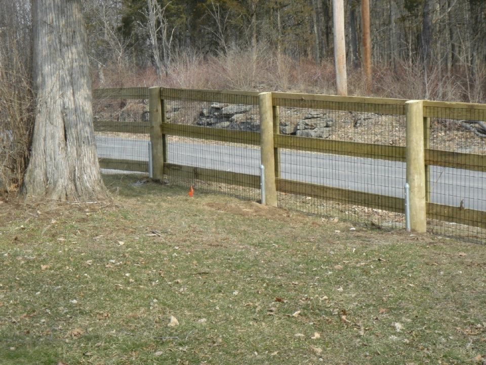 Image of: Dog Fences and Gates