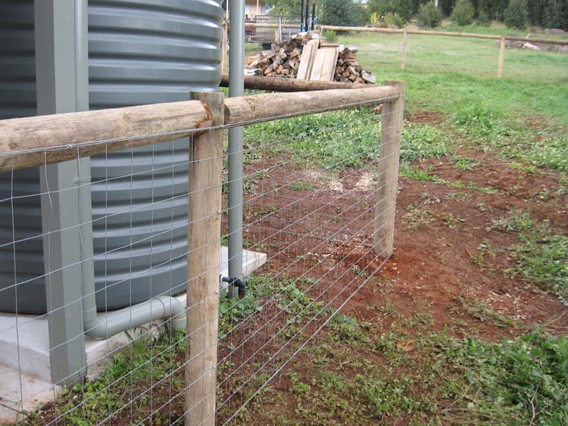 Image of: Dog Fencing Lowes