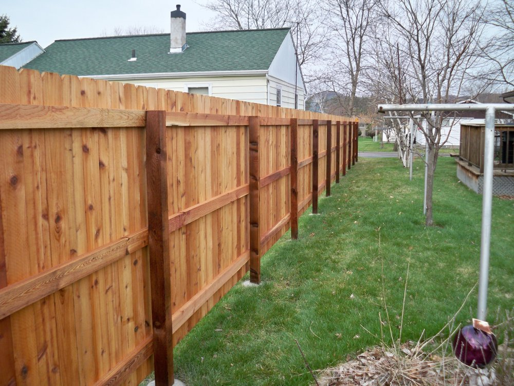 Image of: Dog Fencing and Kennels