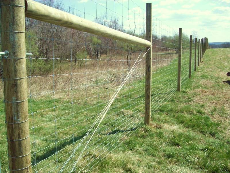 Easy Deer Fencing