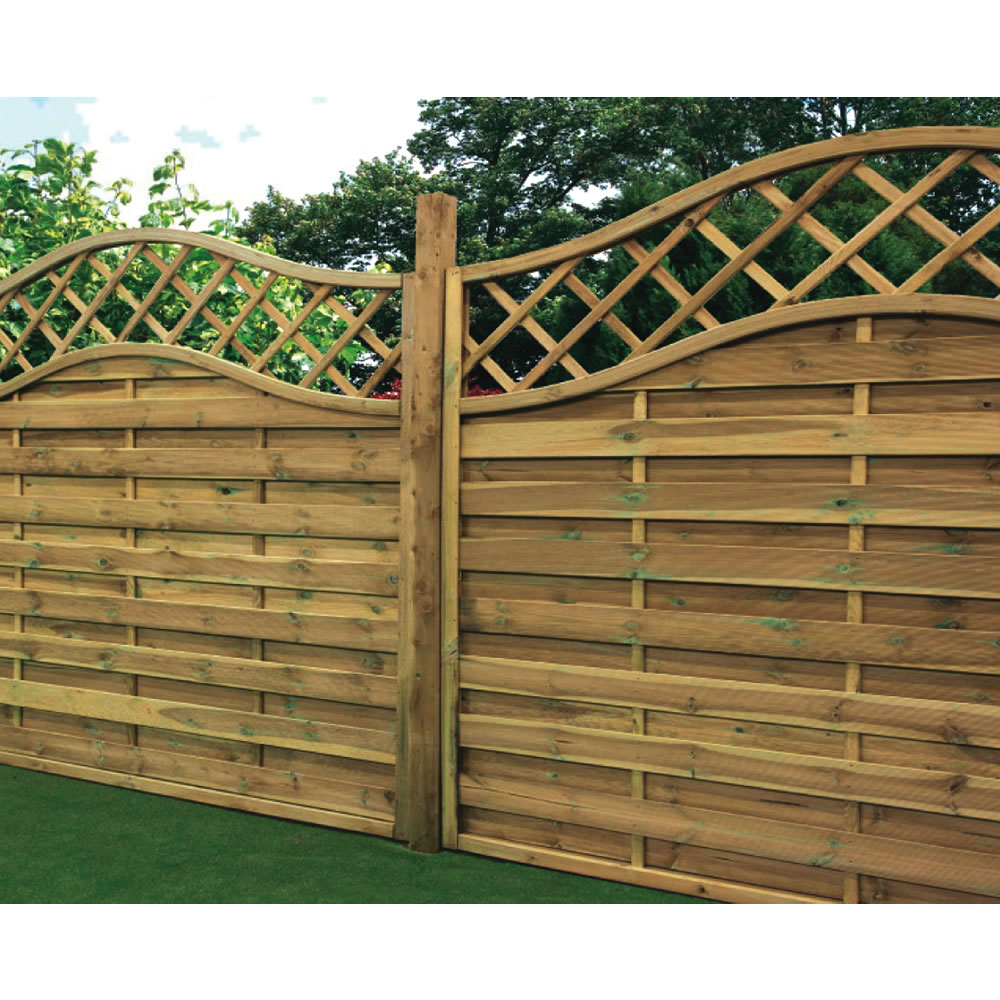 Image of: Elegant Cheap Fencing Ideas