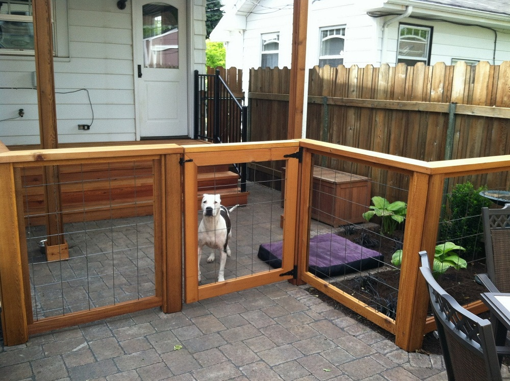 Front Dog Fence Ideas