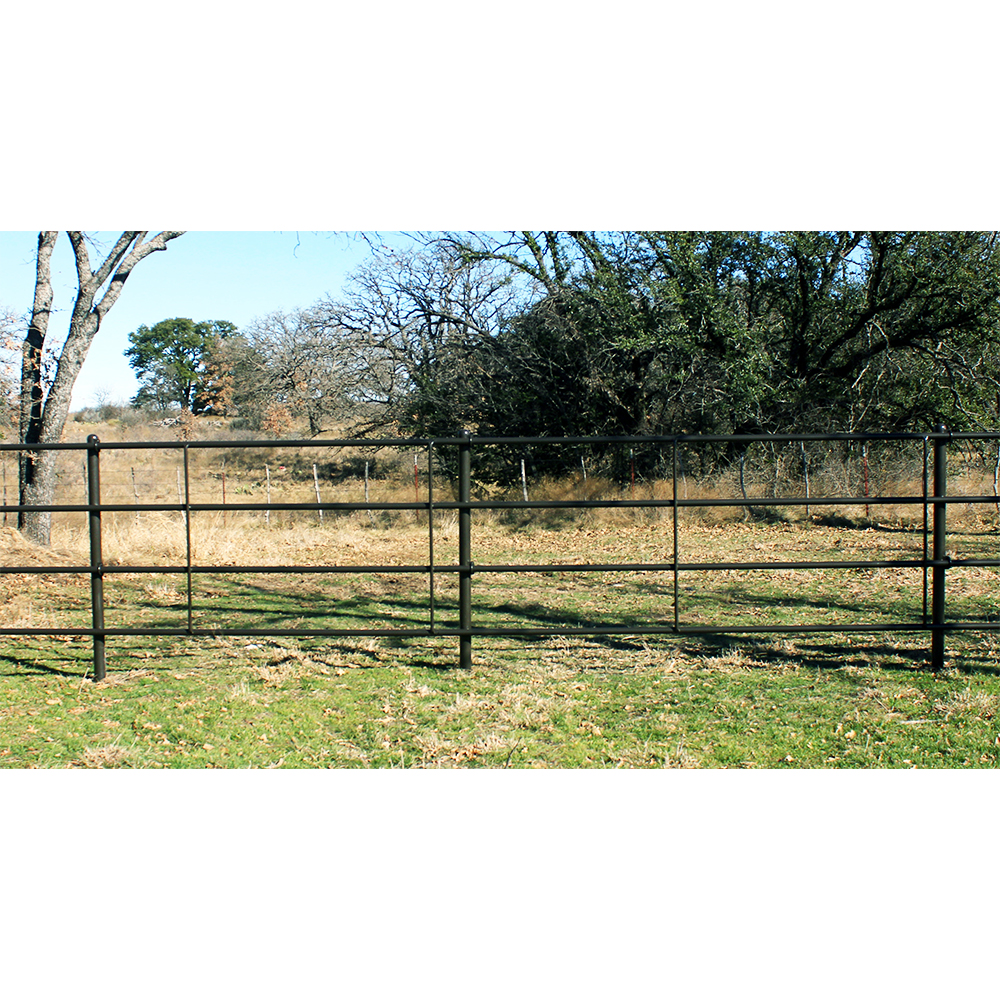 Image of: Garden Cheap Privacy Fence