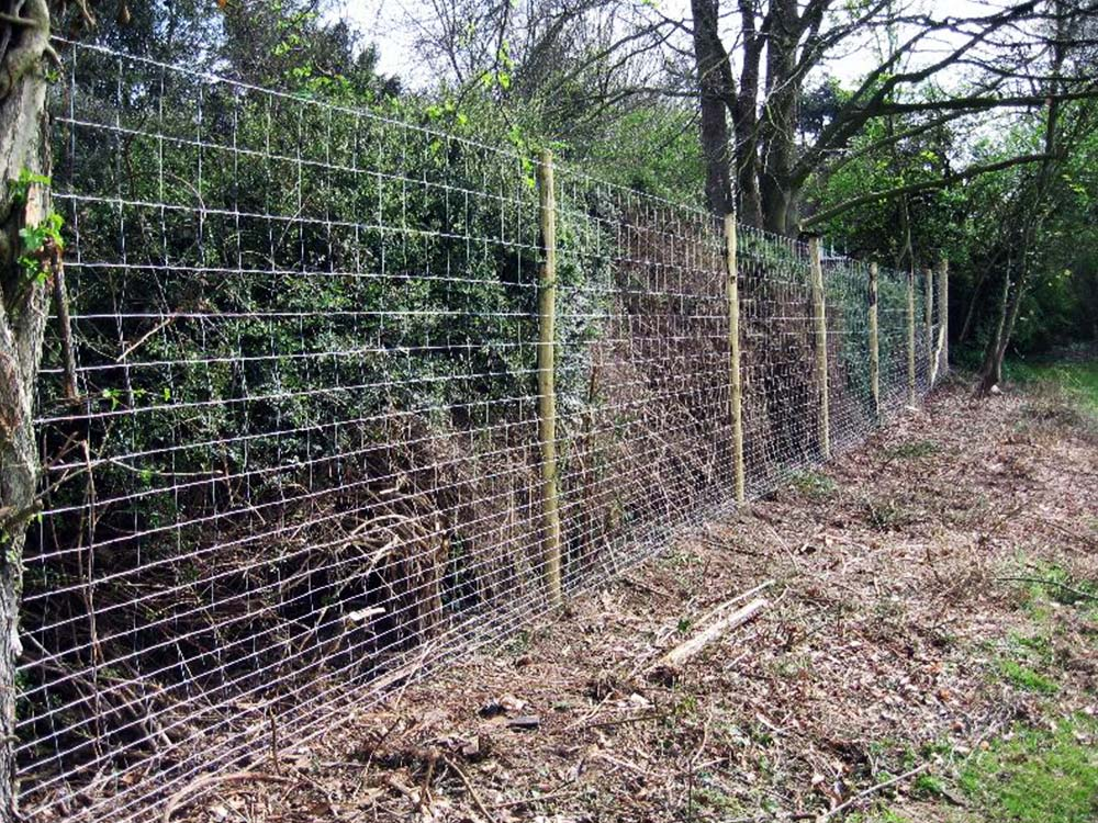 Image of: Garden Deer Fencing